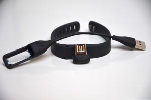 Fitbit Flex 3